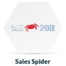sales_spider